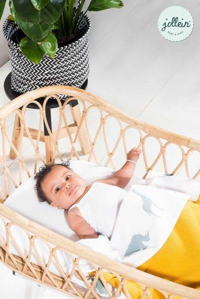 foto Tips en weetjes zorg voor je baby